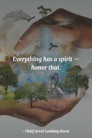 best 25 native american quotes ideas on pinterest native