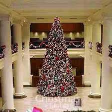 story book trees top 10 commercial trees