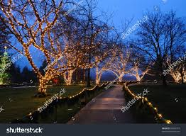 beautiful garden night scene christmas historic stock photo