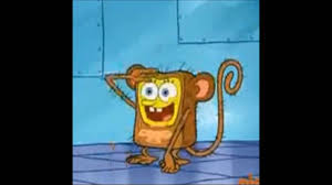 Sponge Bob Memes - dank spongebob memes compilation v1 youtube