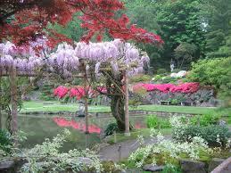 japanese garden archives parkways