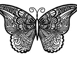 detailed butterfly coloring pages for adults 21 detailed butterfly coloring pages coloring pages detailed