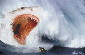 biggest megalodon shark the biggest shark in the world megalodon