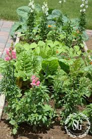a walk in the vegetable garden stonegable