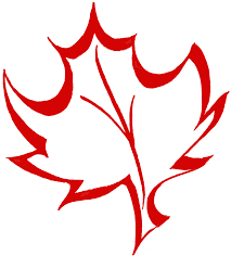 maple leaf coloring page coloring pages clip art library