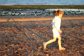 crab meadow weather tide predictions walk to king island from wellington point brisbane kids
