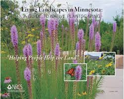 native plants in landscape management mississippi headwaters audubon society