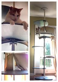 Instructables Cat Tree by Our Homemade Diy Cat Tree Nailed Cheap Beds To Two Of The