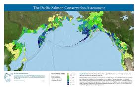 Map Of Russia And Alaska by Stronghold Approach Wild Salmon Center