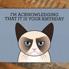 best grumpy cat birthday cards products on wanelo