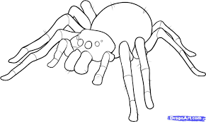 11 how to draw an easy spider