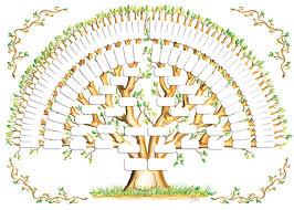 5 Generation Family Tree Template Tree Gallery Genealogy Family Tree Template