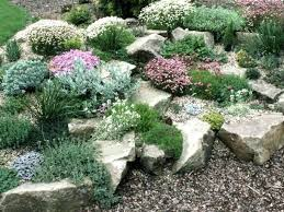 Indoor Rock Garden Ideas Small Rock Garden Ideas How To Landscaping With Rocks Indoor Rock