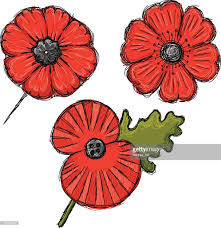 vector poppy pins for wartime remembrance on white vector art