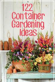 Indoor Plants Arrangement Ideas by 388 Best Container Gardens Images On Pinterest Hydrangeas