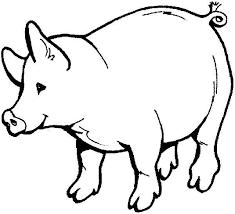 pig drawings kids coloring coloring sky