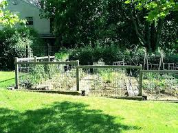 Fencing Ideas For Small Gardens Fence Ideas For Dogs Yamacraw Org
