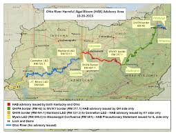 Map Of Bowling Green Ohio by Harmful Algal Bloom In Ohio River Shows Effects Of Nutrient