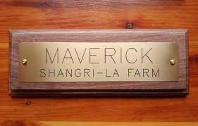 wood plaque engraved brass name plate on solid walnut wood plaque starting at