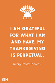 thanksgiving why do we celebrate it 15 best thanksgiving quotes inspirational and funny quotes about