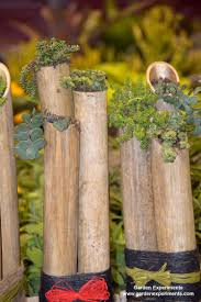 ideas from the 2015 everything home u0026 garden expo