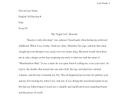 cover letter format for an essay format for an argumentative essay