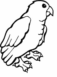 free printable parrot coloring pages for kids
