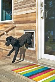 pet doors for sliding glass door 70 best doggy door images on pinterest dog stuff dog houses and
