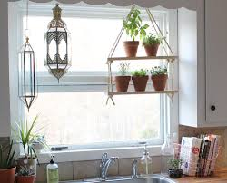 100 kitchen plants that don t need sunlight home office