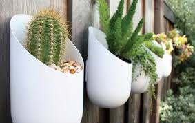 modern hanging planters modern planters from wallter planters cacti and plants