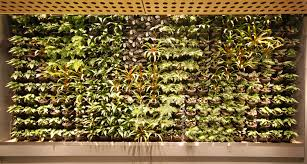 wall garden indoor inner city nature green walls and vertical gardens inner city nature