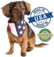 vet u0027s best flea tick yard u0026 kennel spray for dogs u0026 cats 32 oz