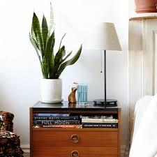 bedroom with wooden nightstand and indoor plant indoor plants