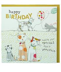 molly mae cats birthday cards birthday cards for cat lovers cats