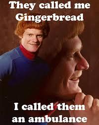 Meme Catalog - ginger christmas meme festival collections
