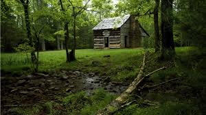 forest house old forest house wallpaper free old forest house wallpaper image