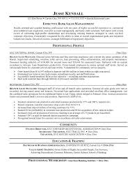 Sample Resume Finance Manager by Career Perfect Sales Management Sample Resume Recentresumes Com