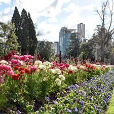 royal botanic gardens melbourne melbourne australia travel and