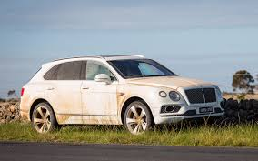 bentley bentayga 2016 news bentley u0027s bentayga range to mushroom coupe a possibility