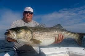 Cape Cod Kids Fishing - cape cod striped bass fishing charters with reel deal fishing charters