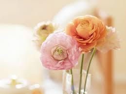 Flowers Decor Elegant Floral Interior Decorations Ranunculus Flowers Elegant