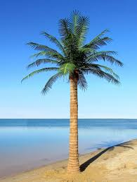 interesting artifical palm tree 16 for your home design with