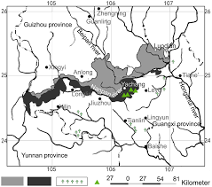 Russian Boreal Forest Disturbance Maps by Li Y Hui G Yu S Luo Y Yao X Ye S 2017 Nearest Neighbour