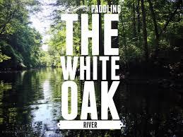 White Oak Paddling The White Oak River Part 2 Of 2 Long Point Landing To
