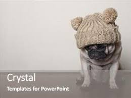cute powerpoint templates crystalgraphics