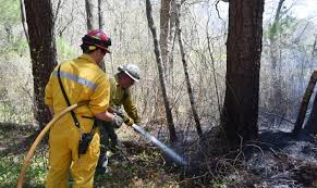 mashpee brush fire spotted by fire tower observers