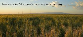 agriculture research ag research montana university