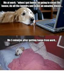 Working From Home Meme - me at work when i get home im going to clean the house do all