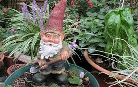 free photo gnome digging garden max pixel