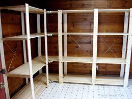 Pantry Shelf Diy Pantry Shelves U2014 New Decoration Ideal Pantry Shelves Ideas
